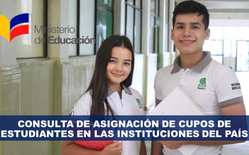 Consulta de asignación de cupos de estudiantes en las instituciones del país