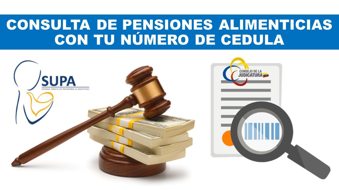 Consultar pensiones alimenticias SUPA Ecuador