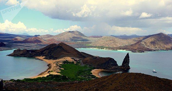 La Unesco declaró a las islas Galápagos como Patrimonio Natural de la Humanidad en 1979, para luego seis años más tarde declararlo como Reserva de la Biosfera en 1985. En el 2007 la Unesco declaró a las islas Galápagos como Patrimonio de la Humanidad en riesgo medioambiental y hasta el 2010 estuvo incluida en la Lista del Patrimonio de la Humanidad en peligro.